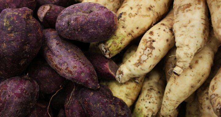 Süßkartoffel-versus-Speisekatoffel